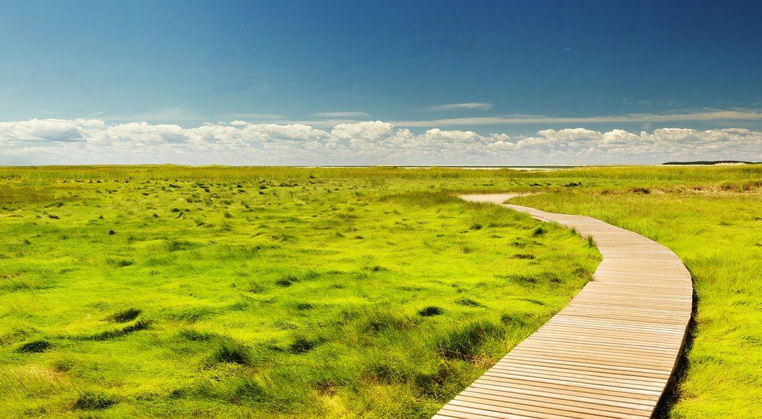 Autorizzazioni ambientali necessarie per svolgere le varie attività: requisiti minimi e caratteristiche delle stesse